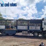 Dịch vụ vận tải hàng hóa Quận 10